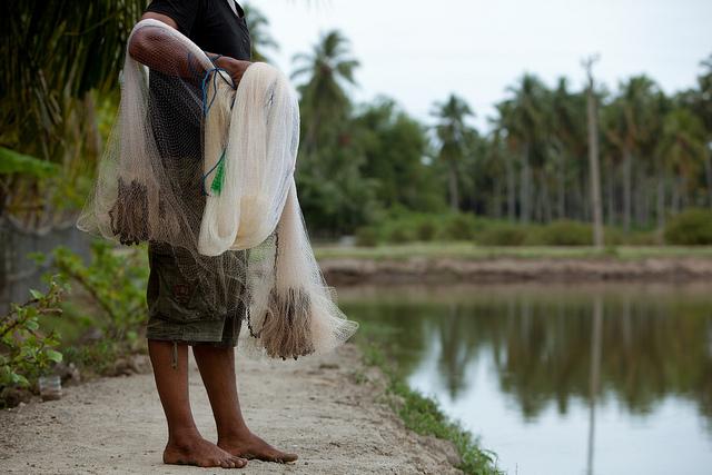 Un pescatore con la sua rete da pesca in piedi a bordo del suo stagno di gamberetti ad Aceh, in Indonesia